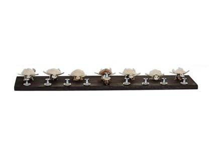 Picture of Shell Turtle Menorah